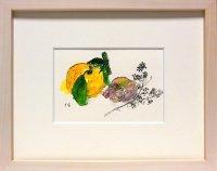 柚と貝   ミニアチュール   葉書サイズ   ペンに水彩
