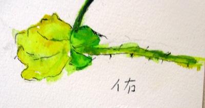 画像1: ミニバラ    カット     ペンに水彩
