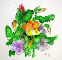 画像1: ビオラ    カット   ペンに水彩