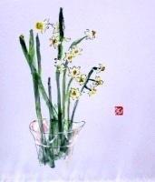 画像1:  水仙   色紙    ペンに水彩